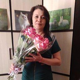 Елена, 43 года, Волгоград