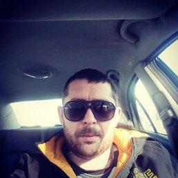 Стас, 32 года, Ужгород