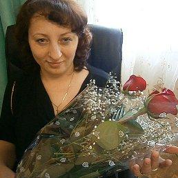 Анастасия, 41 год, Красноярск