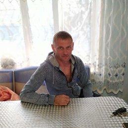 Вася, 42 года, Пермь