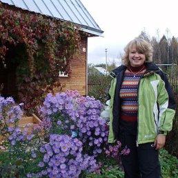 Елена, 51 год, Клин