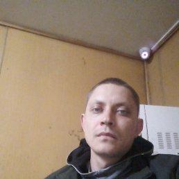 Александр, 29 лет, Пермь