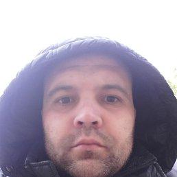 Сергей, 38 лет, Тольятти