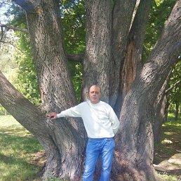 Виктор, 50 лет, Кременчуг