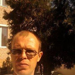Сергей, 46 лет, Волгоград
