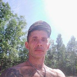 Павел, 44 года, Снежинск