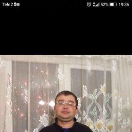 Владимир, 33 года, Сарапул