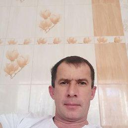 Алексей, 45 лет, Краснодар