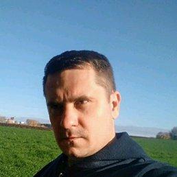 Денис, 35 лет, Новосибирск