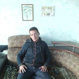 Сергей, 41 год, Каменское
