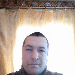 Юра, 37 лет, Косов