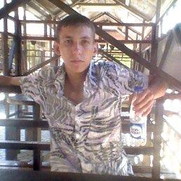 Илья, Волгоград, 27 лет