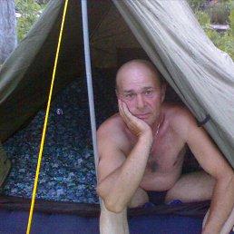 Николай, 58 лет, Воронеж
