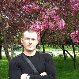 Дима, 43 года, Волгоград