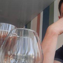 Андрей, 37 лет, Белгород