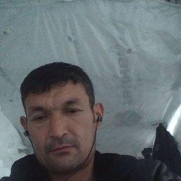 Максимус, 41 год, Екатеринбург