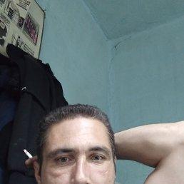 Александр, 37 лет, Белогорск