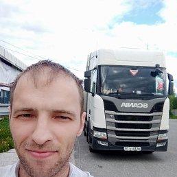 Пашок, 37 лет, Таганрог