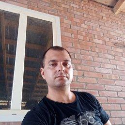 Саша, 33 года, Сальск