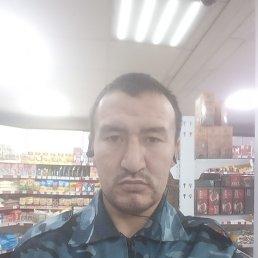 Юрий, 33 года, Владивосток
