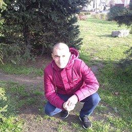 Саша, 32 года, Щелково