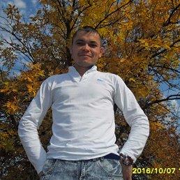 евгений, 41 год, Цимлянск