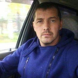 Дима, Екатеринбург, 38 лет