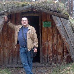 Николай, 42 года, Новосибирск
