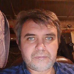 Владимир, 44 года, Городище