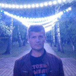 Сергей, 44 года, Пермь