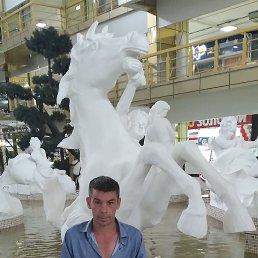Вадик, 41 год, Владивосток