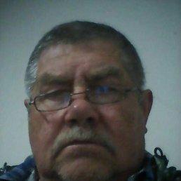 Александр, 62 года, Краснодар