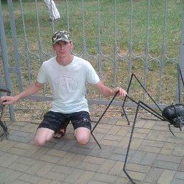 Максим, 29 лет, Сальск