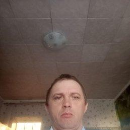 Саша, 40 лет, Краснодар