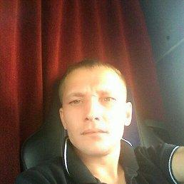 Сергей, 40 лет, Омск