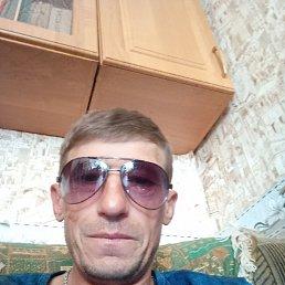 Юрий, 40 лет, Владивосток