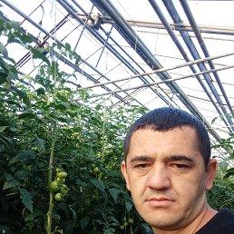 Мухамадулло, 33 года, Дрезна