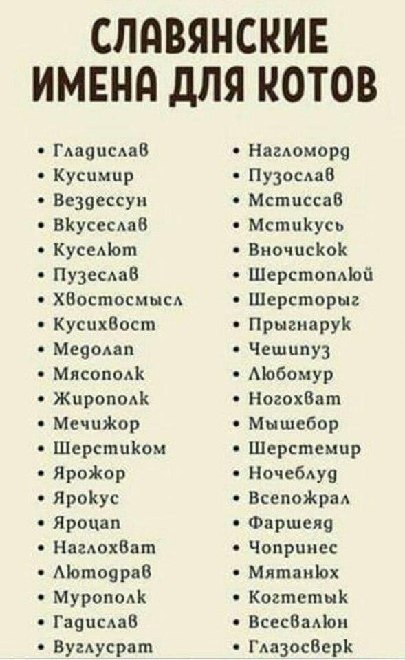 А у меняу все Васьки (((