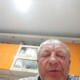 Николай, 62 года, Новосибирск