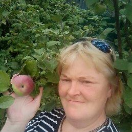 Катюша, 36 лет, Ногинск