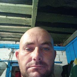 Саша, 33 года, Саратов