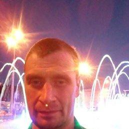Владимир, 47 лет, Тверь