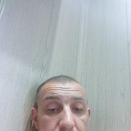 Миша, 36 лет, Куровское
