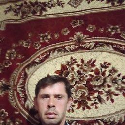 Виктор, 45 лет, Воронеж