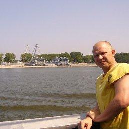 Алексей, 43 года, Батайск