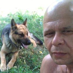 Андрей, 41 год, Сумы