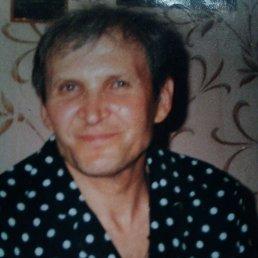 Николай Николаевич, 66 лет, Волгодонск