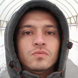 Антон, Краснодар, 36 лет