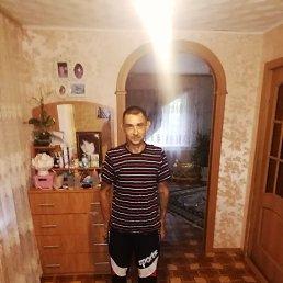 Сергей, 35 лет, Дмитровск