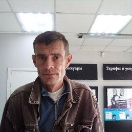 елена, 45 лет, Новочеркасск